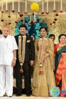 Rajendra Prasad Son Wedding Reception (72)