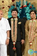 Rajendra Prasad Son Wedding Reception (73)