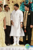 Rajendra Prasad Son Wedding Reception (75)