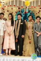 Rajendra Prasad Son Wedding Reception (87)