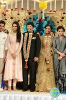 Rajendra Prasad Son Wedding Reception (88)