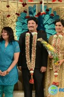 Rajendra Prasad Son Wedding Reception (93)