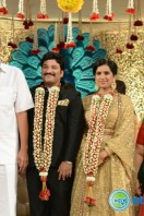 Rajendra Prasad Son Wedding Reception (94)