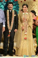 Rajendra Prasad Son Wedding Reception (96)