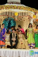 Rajendra Prasad Son Wedding Reception (99)
