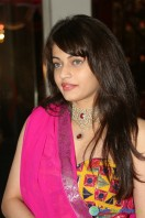 Sneha Ullal Photos