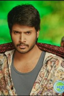 Tiger Telugu Film Stills (1)