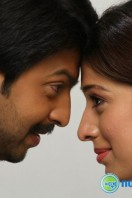 Sowkarpettai Movie Gallery