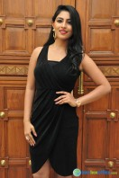 Kruthika at Vinavayya Ramayya Audio Launch (10)