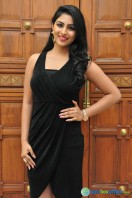 Kruthika at Vinavayya Ramayya Audio Launch (11)