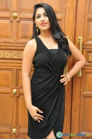 Kruthika at Vinavayya Ramayya Audio Launch (13)