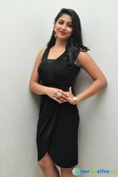 Kruthika at Vinavayya Ramayya Audio Launch (19)