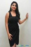 Kruthika at Vinavayya Ramayya Audio Launch (26)