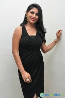 Kruthika at Vinavayya Ramayya Audio Launch (27)