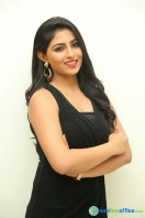 Kruthika at Vinavayya Ramayya Audio Launch (31)