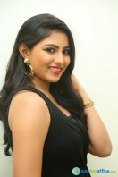 Kruthika at Vinavayya Ramayya Audio Launch (36)
