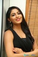 Kruthika at Vinavayya Ramayya Audio Launch (5)