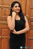 Kruthika at Vinavayya Ramayya Audio Launch (8)