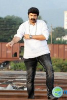 Legend Actor Balakrishna Stills (2)
