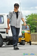 Legend Actor Balakrishna Stills (4)