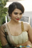Priyanka Ramana at National Silk Expo Launch (22)