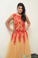 Pavana at Aatagara Press Meet (2)