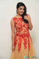 Pavana at Aatagara Press Meet (4)
