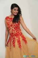 Pavana at Aatagara Press Meet (5)