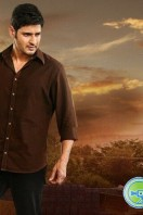 Srimanthudu Latest Gallery (8)