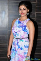Kruthika at Bale Bale Magadivoy Audio Launch (33)