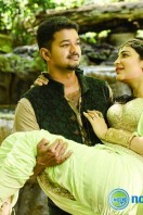 Puli New Gallery