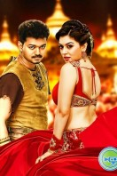 Puli New Images (1)