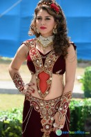 Puli New Images (11)