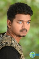 Puli New Images (13)