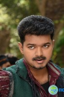 Puli New Images (16)