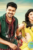 Puli New Images (2)