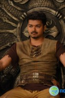 Puli New Images (25)