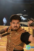 Puli New Images (27)