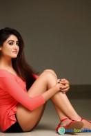 Sony Charishta New Photo Shoot (7)
