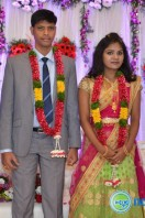 Navakanth Son Wedding Reception (114)