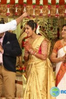 Siva Nageswara Rao Daughter Marriage Reception (15)