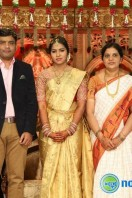 Siva Nageswara Rao Daughter Marriage Reception (27)