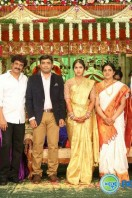 Siva Nageswara Rao Daughter Marriage Reception (53)