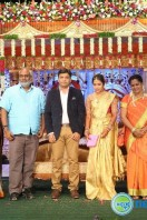 Siva Nageswara Rao Daughter Marriage Reception (8)