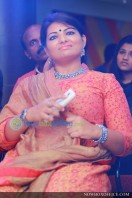 Akashvani audio launch images (15)