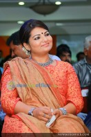Akashvani audio launch images (88)