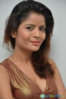 Gehana Vasisth New Photos