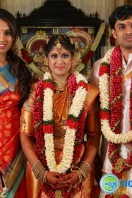 Producer Raviprasad Daughter Marriage Function (5)