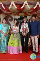 Producer Raviprasad Daughter Marriage Reception (10)