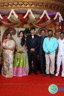 Producer Raviprasad Daughter Marriage Reception (16)